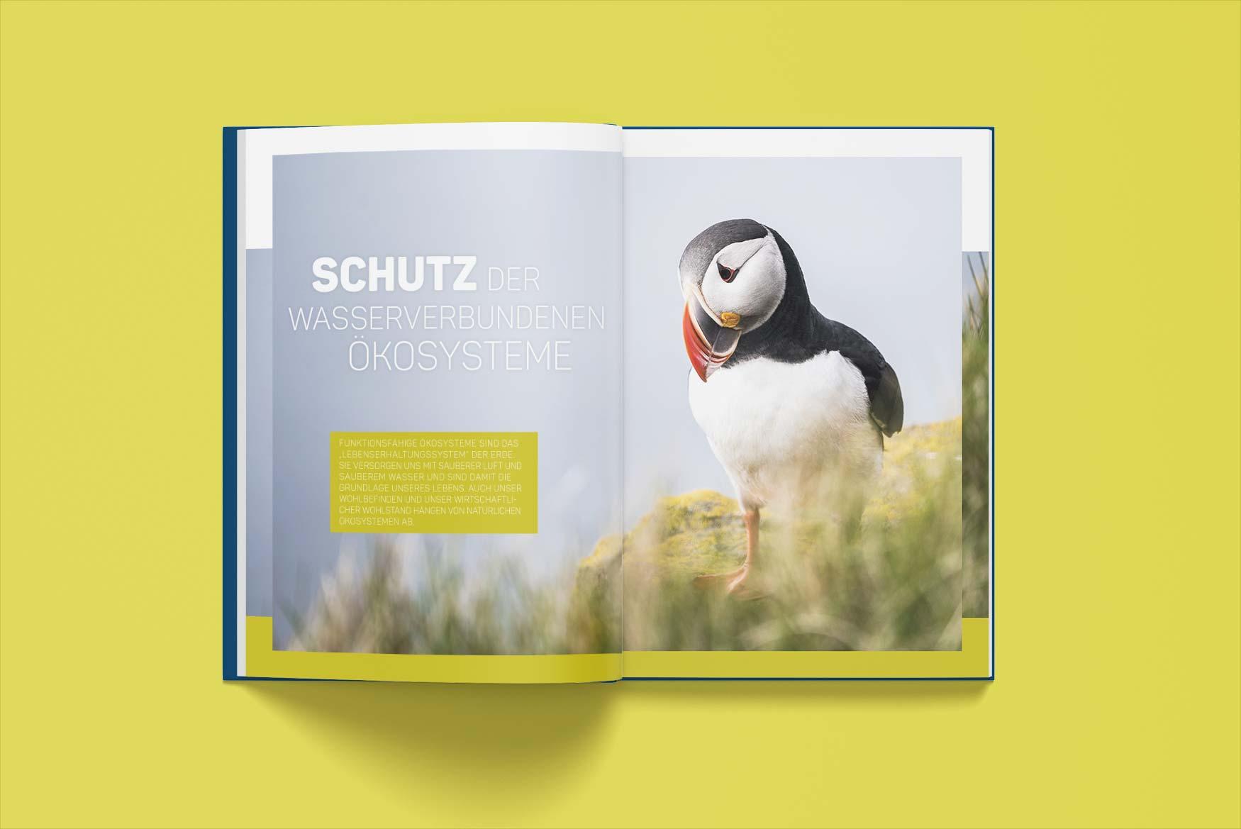 Editorial-Design-Broschuere-Nachhaltigkeit-2-Designagentur-Stuttgart-Kreativbetrieb